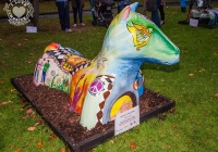 dolf_patijn_Limerick_urban_horse_19092014_0024