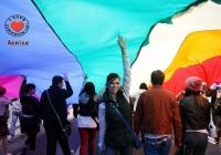 limerick-pride-parade-2013-album-3_16