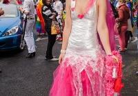 limerick-pride-parade-2013-album-4_111