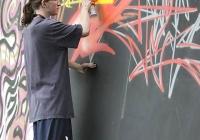 make-a-move-limerick-2013-park-paint-10