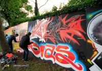 make-a-move-limerick-2013-park-paint-18-jpg