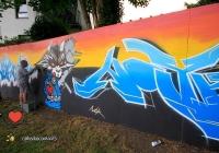 make-a-move-limerick-2013-park-paint-19