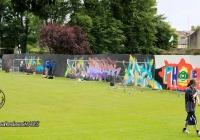 make-a-move-limerick-2013-park-paint-27