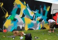 make-a-move-limerick-2013-park-paint-30