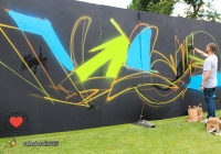 make-a-move-limerick-2013-park-paint-33-jpg