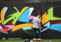 make-a-move-limerick-2013-park-paint-44-jpg