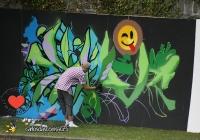 make-a-move-limerick-2013-park-paint-45-jpg