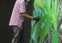 make-a-move-limerick-2013-park-paint-6