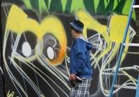 make-a-move-limerick-2013-park-paint-9