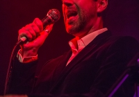 dolf_patijn_Limerick_marriage_equality_cabaret_26042015_0036.jpg