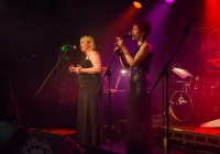 dolf_patijn_Limerick_marriage_equality_cabaret_26042015_0106.jpg