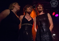 dolf_patijn_Limerick_marriage_equality_cabaret_26042015_0293.jpg