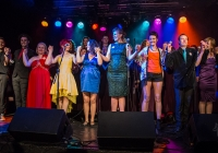 dolf_patijn_Limerick_marriage_equality_cabaret_26042015_0464.jpg
