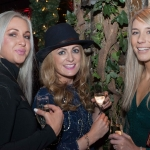 Pictured at the Network Ireland Limerick Christmas at House Limerick - Petrina Hayes (Savoy/George Hotel), Gillian Horan (The Pudding) and Lisa Coughlan (Core Optimisation). Picture: Álex Ricöller / ilovelimerick
