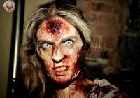 outbreak-limerick-zombie-festival-2013-11