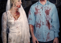 dolf_patijn_limerick_zombie_outbreak_26102013_0032