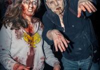 dolf_patijn_limerick_zombie_outbreak_26102013_0059
