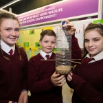 rsz_rds_primary_science_fair_0006