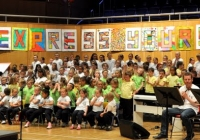 sing-out-with-strings-2013-109