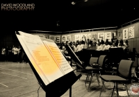 sing-out-with-strings-2013-120