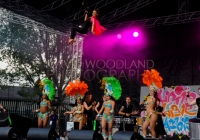 SO_2014_D_Woodland (159)