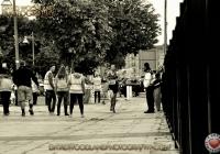 smrc-urban-run-2013-18