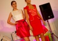 thats-limerick-event-dublin-june-2013-144