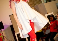 thats-limerick-event-dublin-june-2013-16